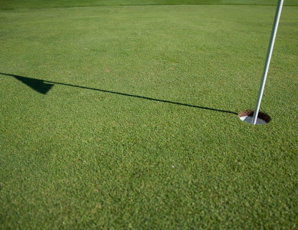 Golf hole on the green with the flagstick in